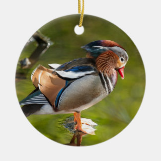 Mandarin Duck Ceramic Ornament