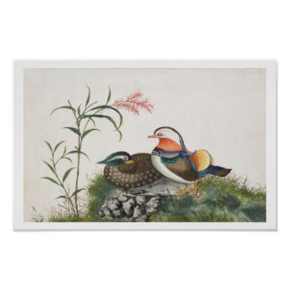 Mandarin Duck Chinese Painting Posters