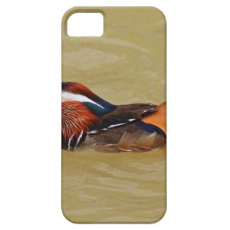 Mandarin Duck iPhone 5 Case