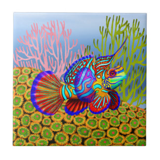 Mandarin Fish on Zoanthid Corals Tile