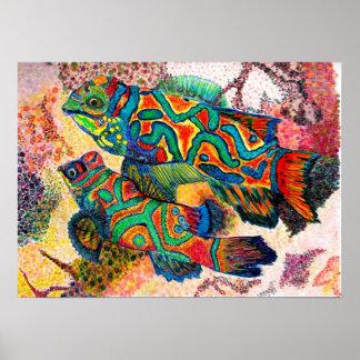 Mandarin Fish Watercolor Poster