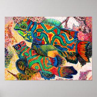Mandarin Fish - watercolor Poster