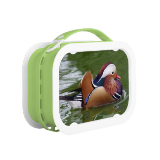 Mandarin Lunch Box
