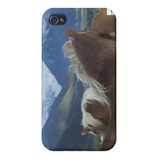 Manes & Mountains iPhone 4 Case