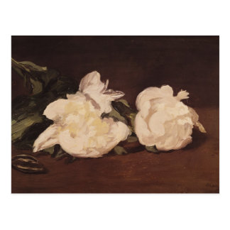 Manet | Branch of White Peonies and Secateurs Postcard