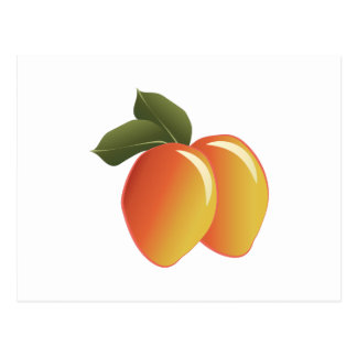 Mango Fruit Postcard