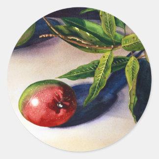 Mango I Classic Round Sticker