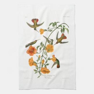 Mangrove Humming Bird Audubon Birds of America Kitchen Towel