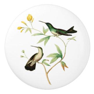 Mangrove Hummingbird Ceramic Knob