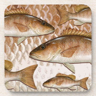 Mangrove Snapper (Gray Snapper) Coasters