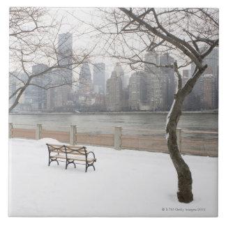 Manhattan in the Winter Tiles