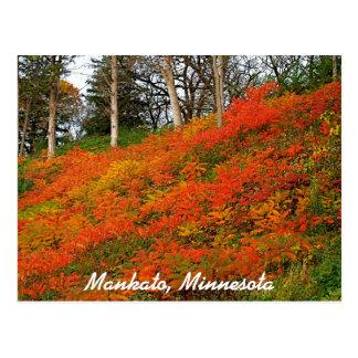 Mankato, Minnesota Postcard