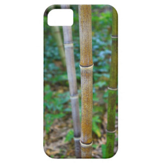 Manly Masculine Bamboo Asian Iphone 5 case