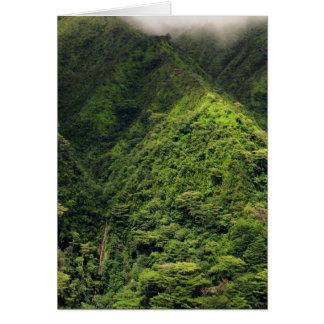 Manoa Falls Card