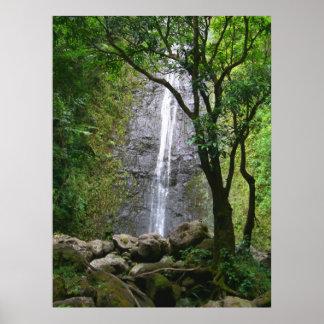 Manoa Falls, O'ahu, Hawai'i Poster