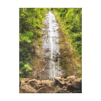 Manoa Falls~Photography by Jacqueline Kruse Canvas Print