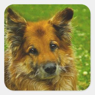 Man's Best Friend #2 Square Sticker