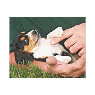 Man's Best Friend Beagle Puppy Canvas Print