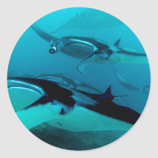 Manta Invasion Classic Round Sticker