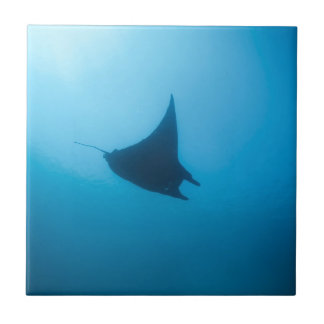 Manta ray blue ocean cleaning station tile