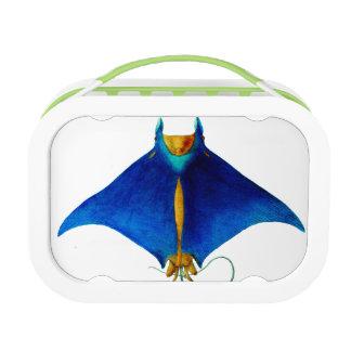 manta ray lunch box