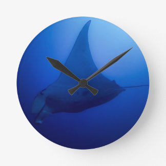 Manta Ray on Great Barrier Reef in Coral Sea Clock