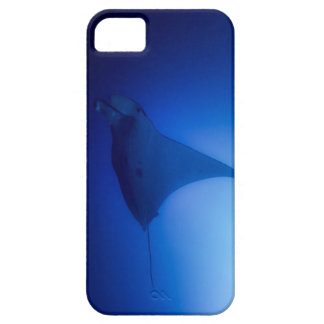 Manta Ray on the Great Barrier Reef iPhone 5 Cases
