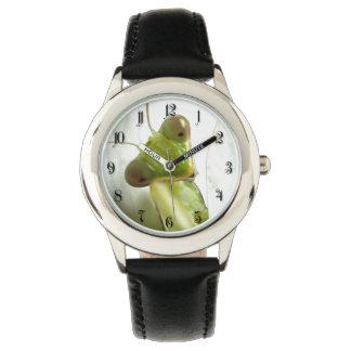 Mantid Watch