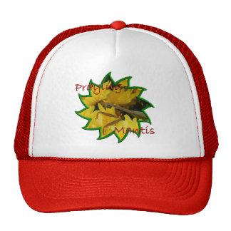 Mantis & Chrysanthemums - Hat #2