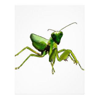 Mantis Letterhead Design