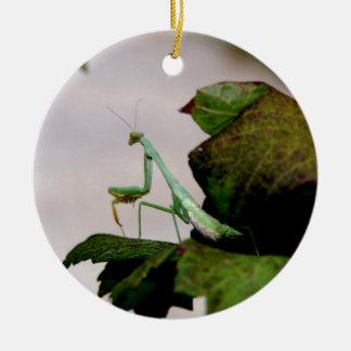 Mantis On A Hydrangea Ceramic Ornament