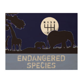 MANUAL - Endangered Wood Print