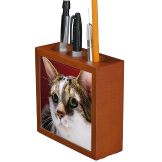 Manx cat desk organizer