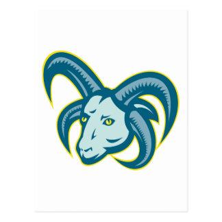 Manx Loaghtan Sheep Ram Head Mascot Postcard