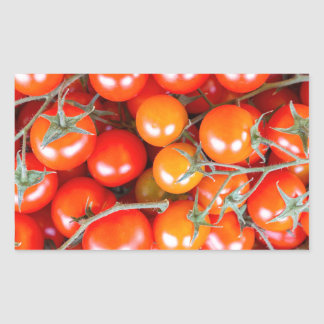 Many bunches of red vine tomatoes