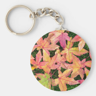 Many colorful autumn maple leaves on green grass basic round button keychain