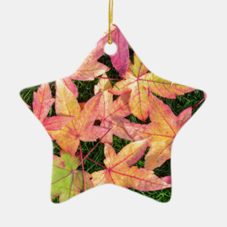 Many colorful autumn maple leaves on green grass ceramic star ornament