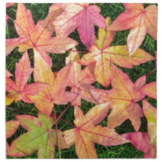 Many colorful autumn maple leaves on green grass napkin