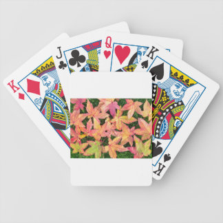 Many colorful autumn maple leaves on green grass poker deck