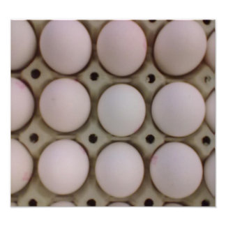 Many eggs photographic print
