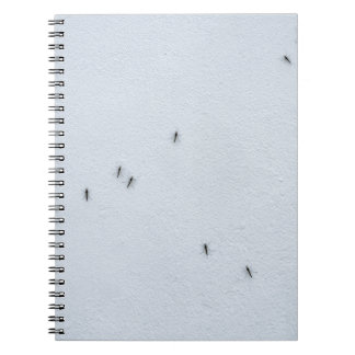 Many mosquitoes on a wall notebooks