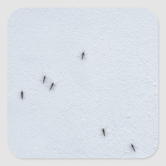 Many mosquitoes on a wall square sticker