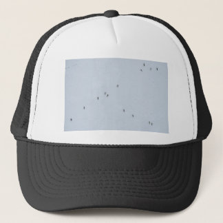 Many mosquitoes on a wall trucker hat