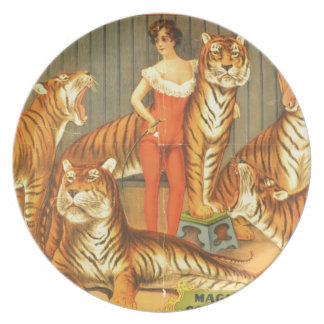Many Pet Tigers Dinner Plates