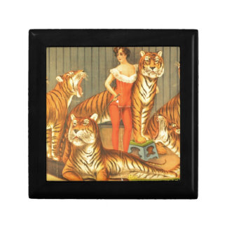 Many Pet Tigers Gift Box