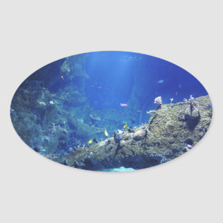 Many Sea Fishes Oval Sticker