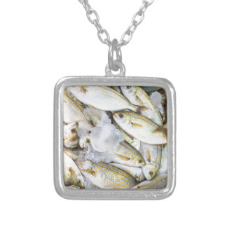 Many small caught dead fish with ice on market silver plated necklace