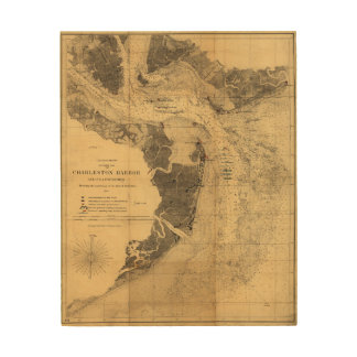 Map of Charleston Harbor South Carolina (1863) Wood Wall Decor