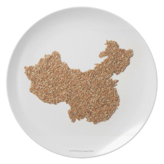 Map of Mainland China made of Glutinous Rice Plate