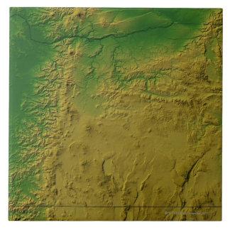 Map of Oregon Tile